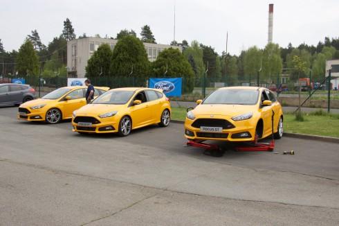 Ford Sosnová 6