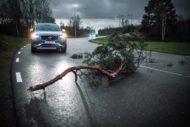 Autoperiskop.cz  – Výjimečný pohled na auta - Společnosti Volvo Cars a Volvo Trucks začnou za účelem zvýšení bezpečnosti na silnicích živě sdílet dopravní informace