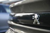 Autoperiskop.cz  – Výjimečný pohled na auta - Peugeot v ČR v roce 2018 opět překonal prodejní rekord a obhájil pozici lídra užitkových vozů
