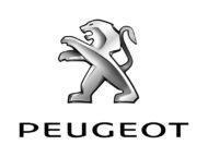 Autoperiskop.cz  – Výjimečný pohled na auta - Obchodní výsledky Peugeot 2020: nezapomenutelný rok