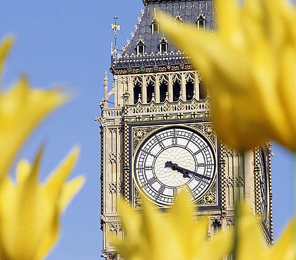Do Londýna autobusem rychleji a bez zastávek
